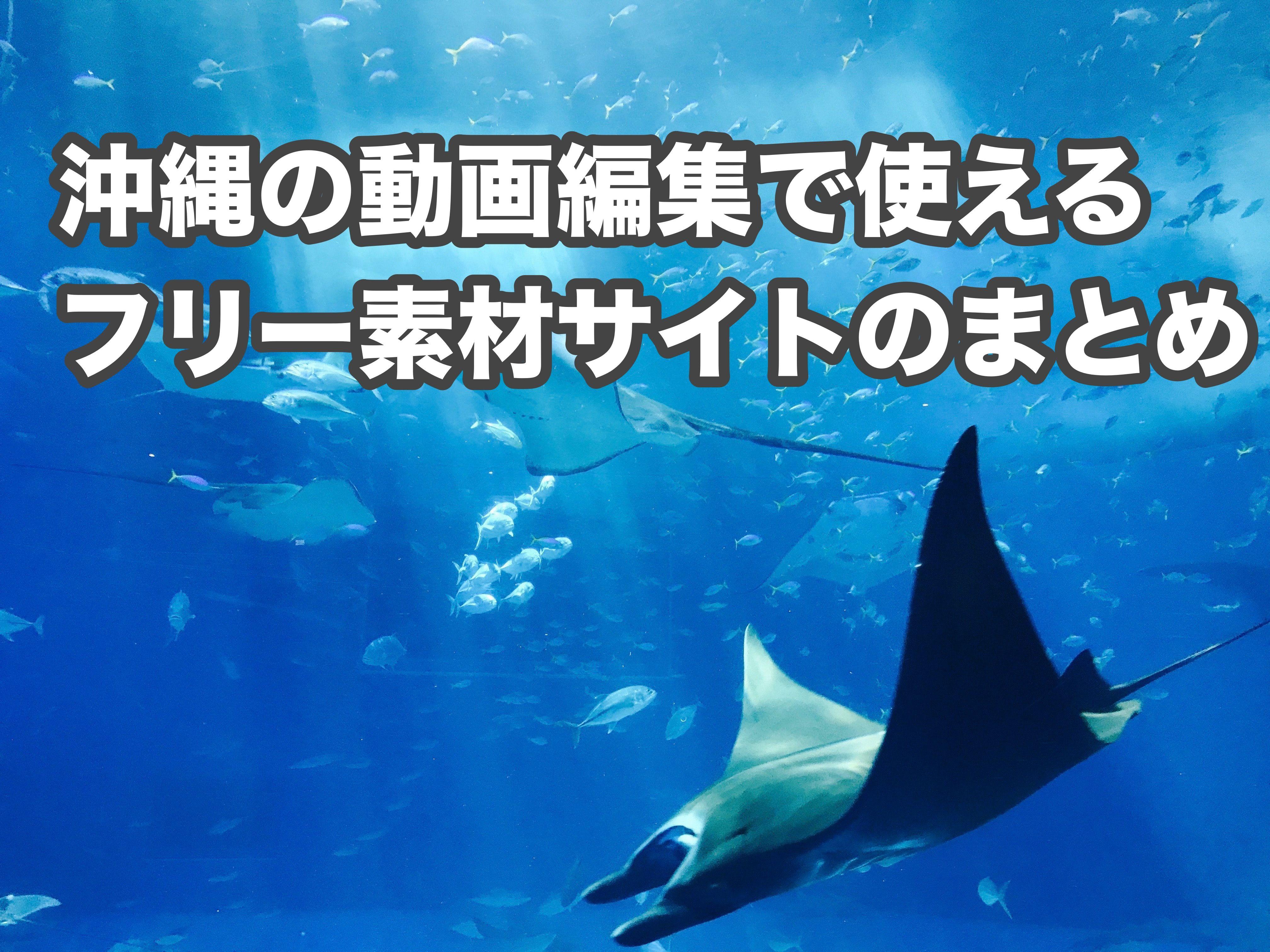 【無料なのにハイクオリティ!】沖縄の動画編集に使えるフリー素材サイトのまとめ