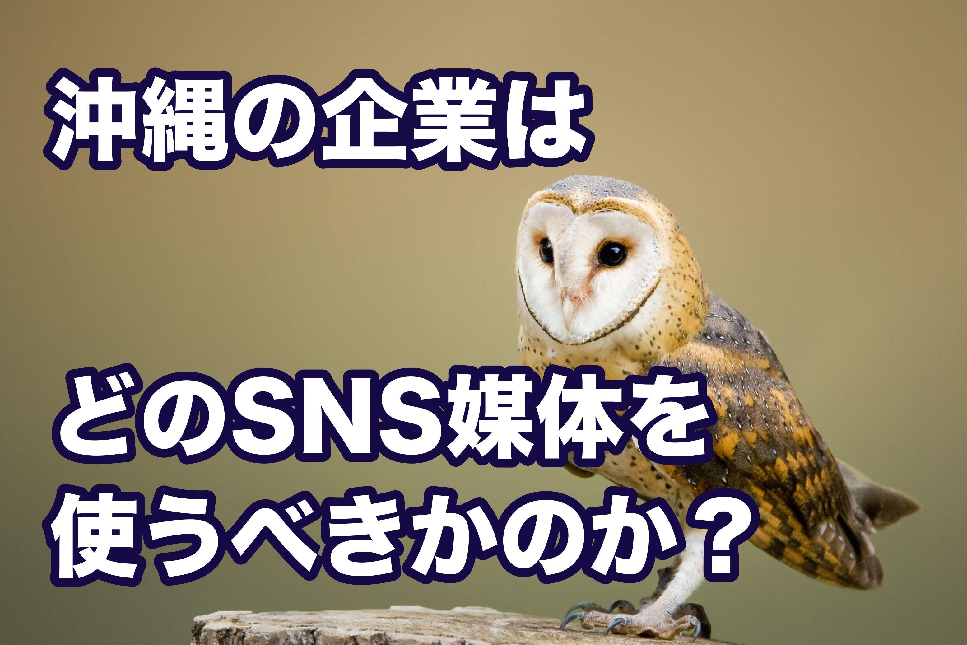 沖縄の企業はどのSNS媒体を使うべきかのか?